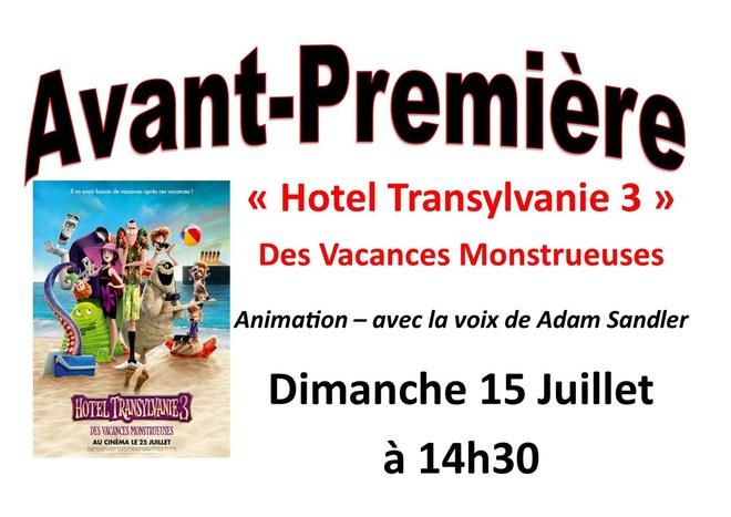 AVP Hotel Transylvanie 3
